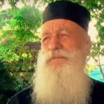 Афонский старец – о грехах, муравьях и львах