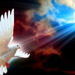 Какая радость в похоронах и поминовении усопших?